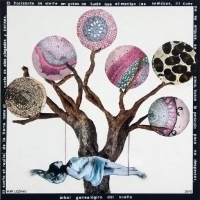 árbol genealógico del sueño w