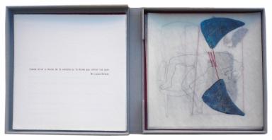 Libro de artista (interior)