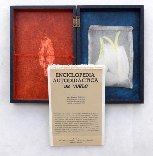 Enciclopedia Vuelo 4 w